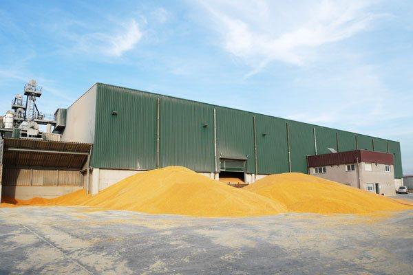 Secadero de maíz